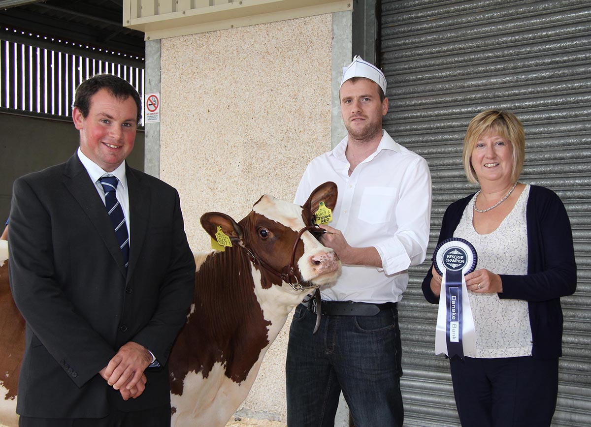 Reserve Shorthorn champion was Kilsally Duchess 17 shown by Andrew Booth, Stewartstown. Included are judge David Christophers, Cornwall; and sponsor Maureen Currie, Danske Bank