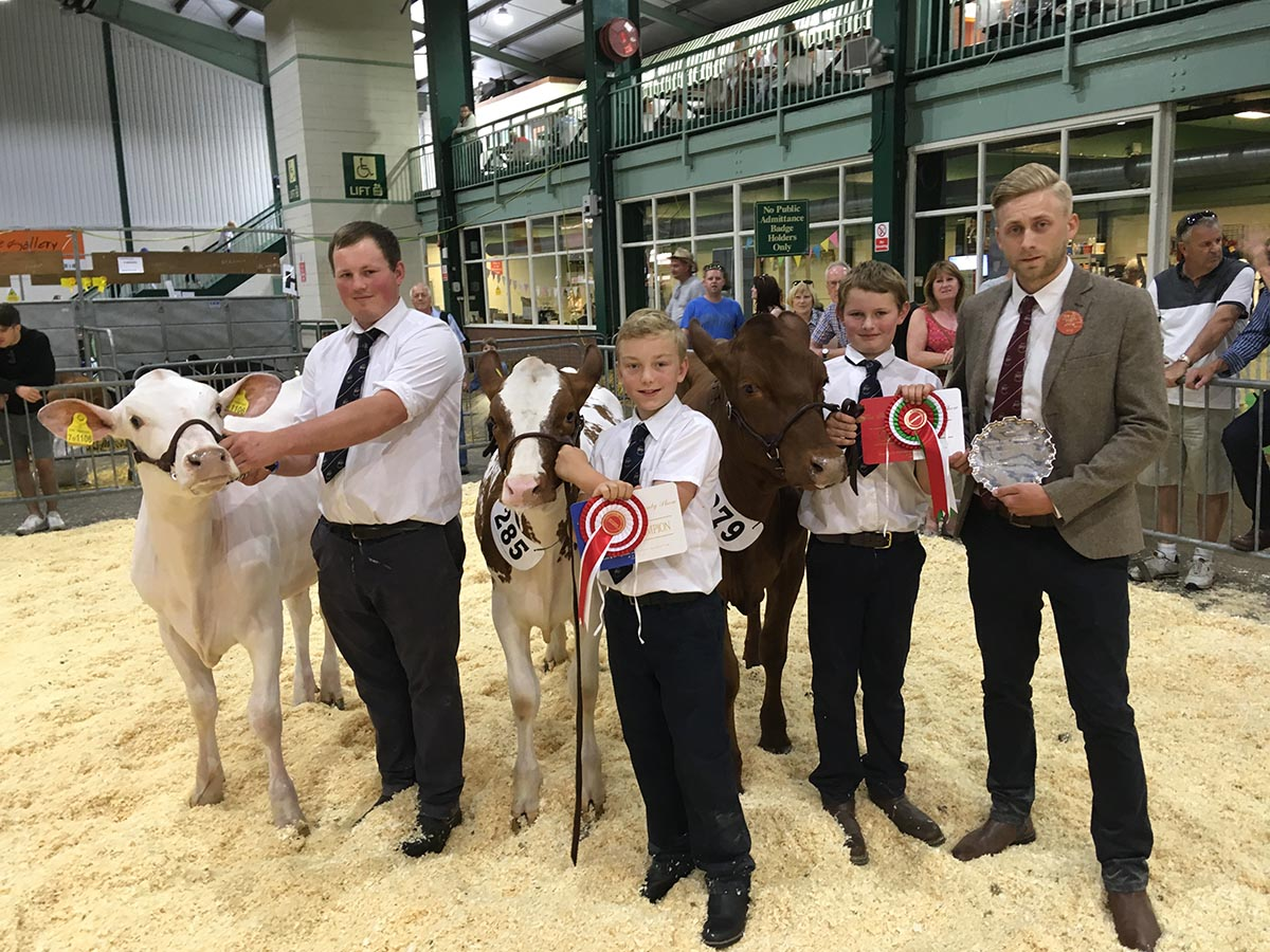 Judge Ben Whittaker with Calf Champion Cotonhall Emire Cherry and Reserve Cotonhall Attitude Pearl and Hon. Nejay Pamela Mary 15