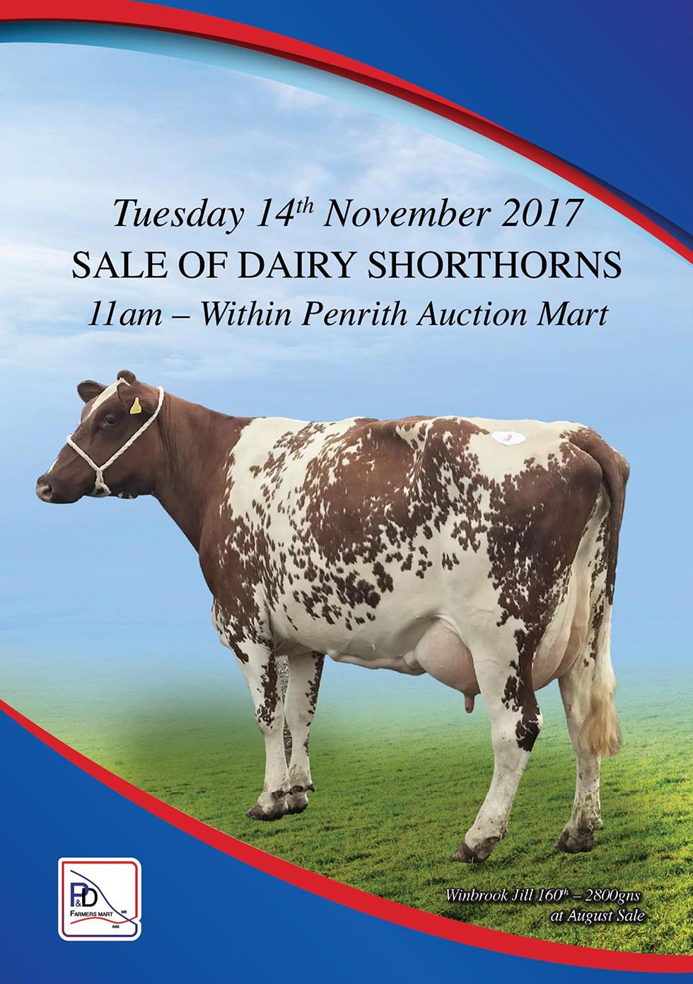 Sale of Dairy Shorthorns