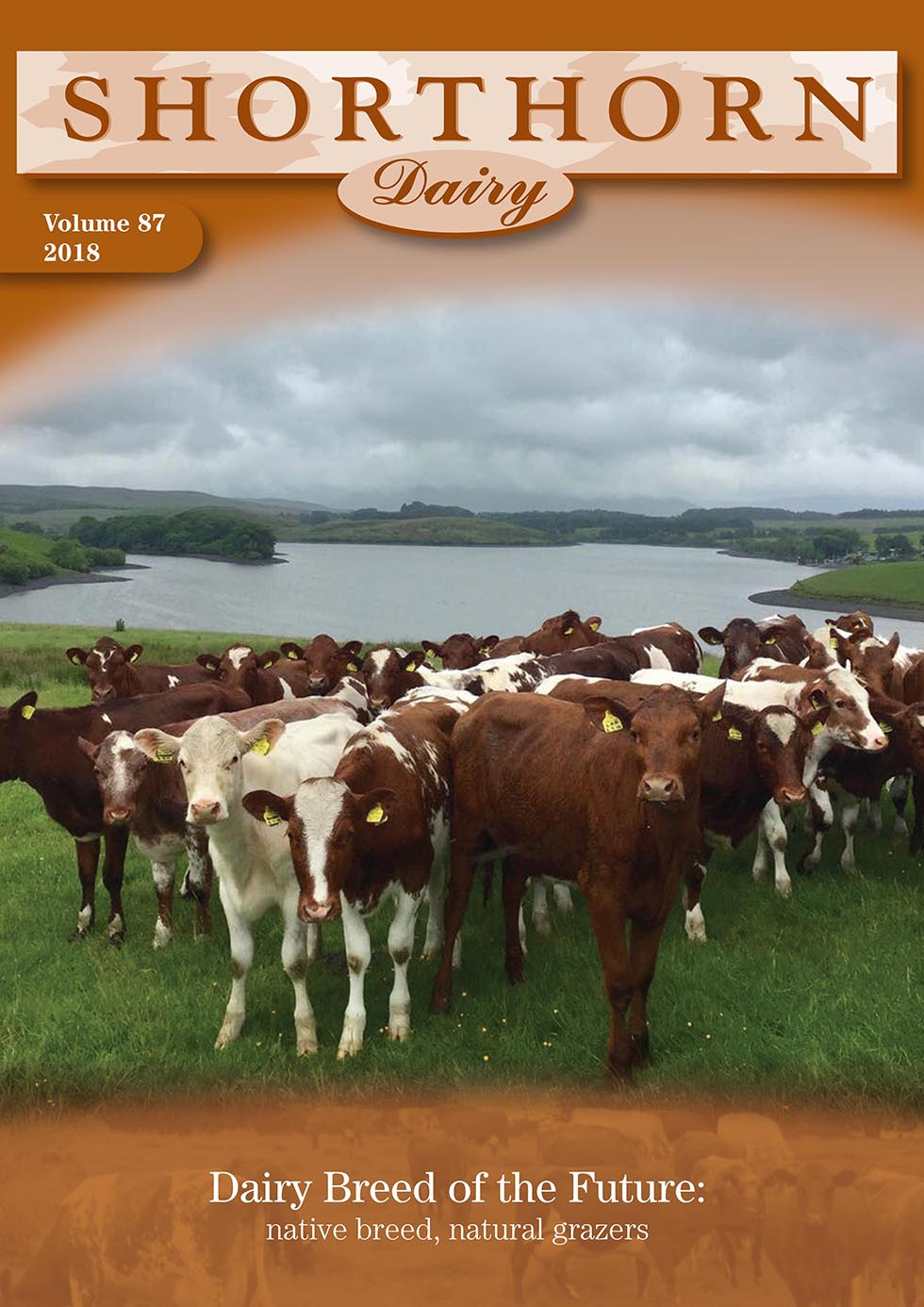 Dairy Shorthorn Journal 2018