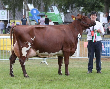 Royal Welsh Show 2018