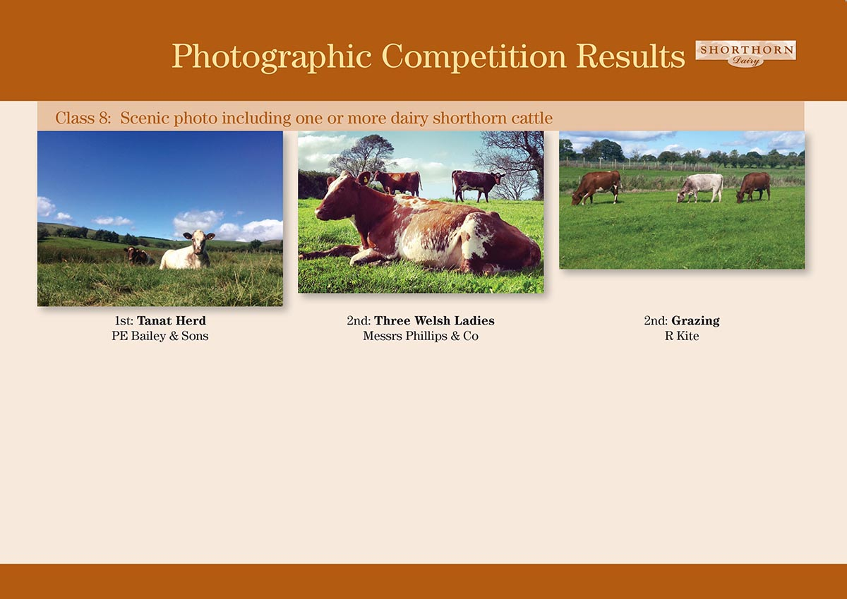 Photographic Competition 2015