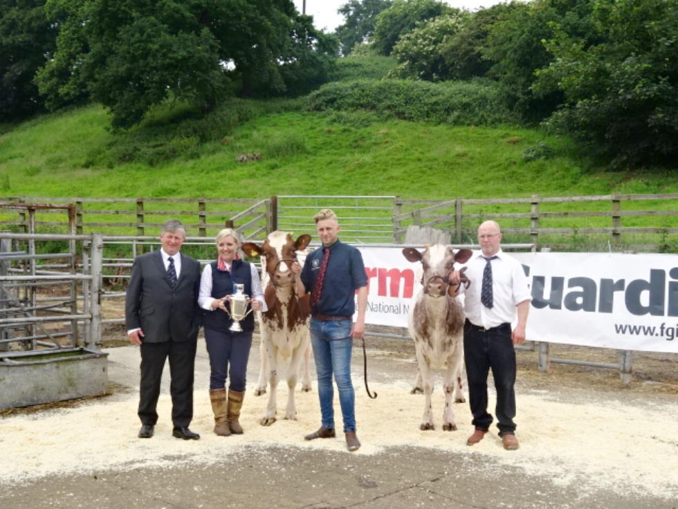 Rodway ET Sisters Top Consistent Shorthorn Sale at Beeston