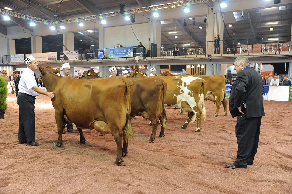 UK Dairy Day 2014 judge J Gribbon