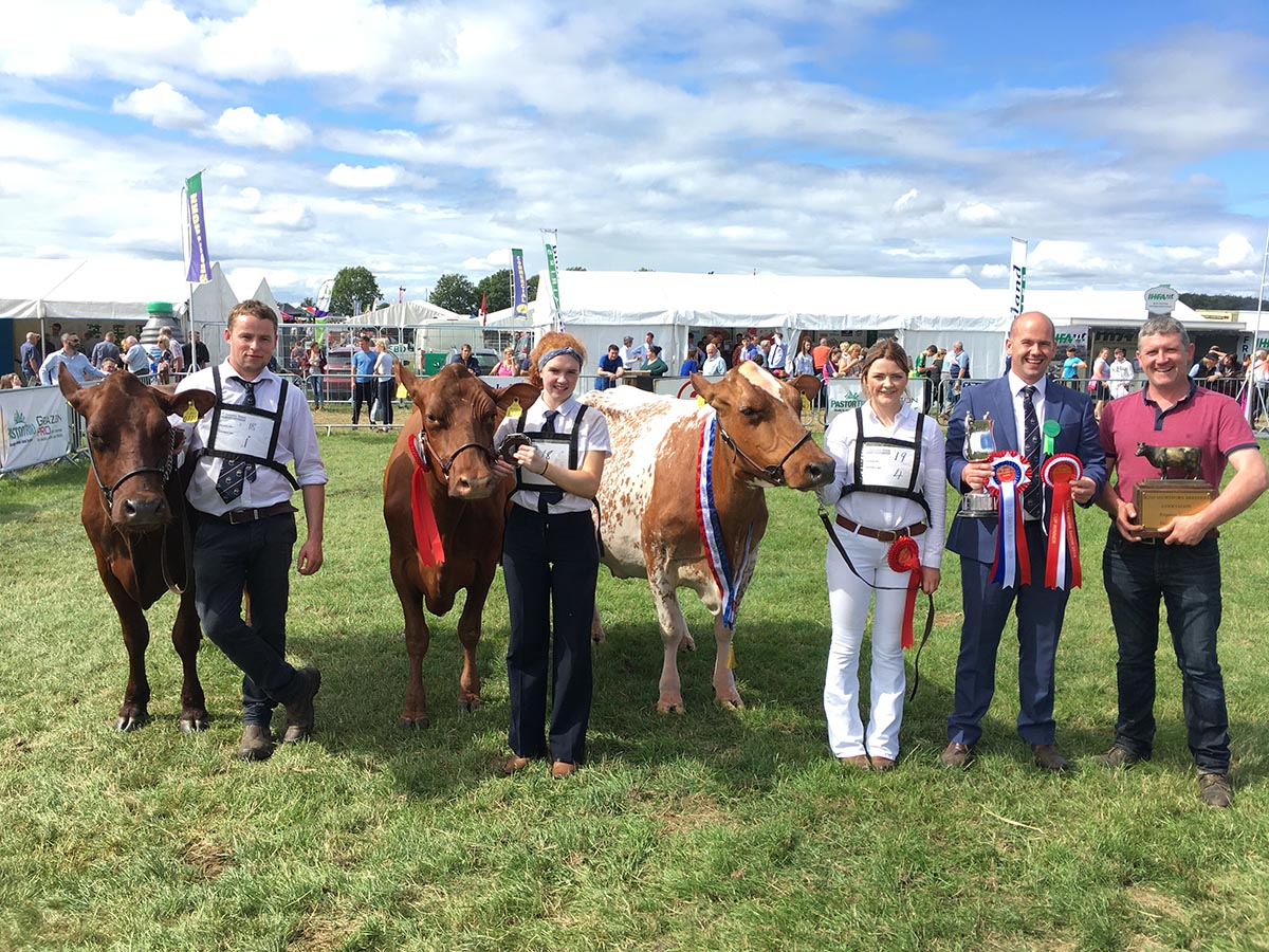 Tullamore Show 2018 Gallery